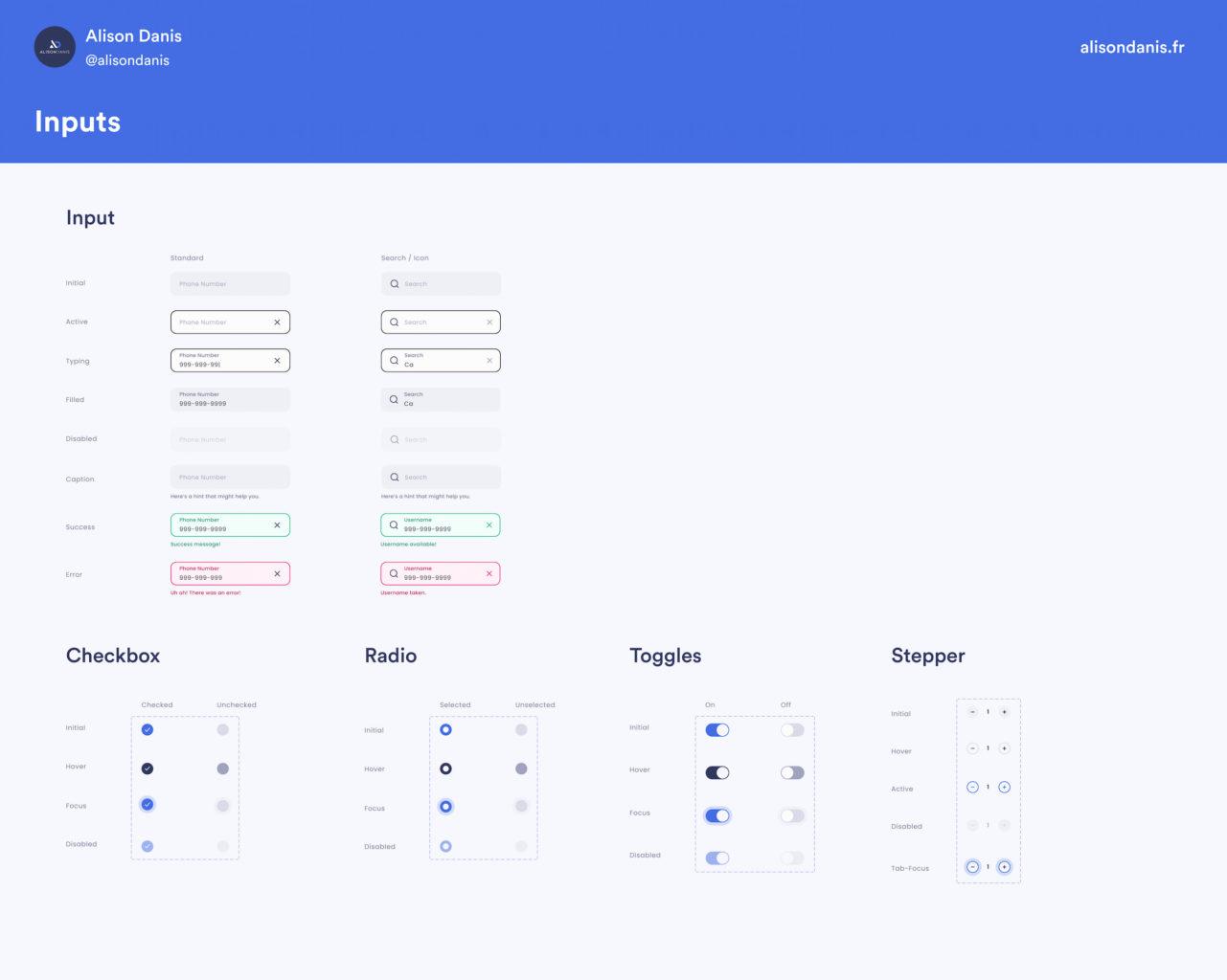 Exemple des inputs dans un Design System.